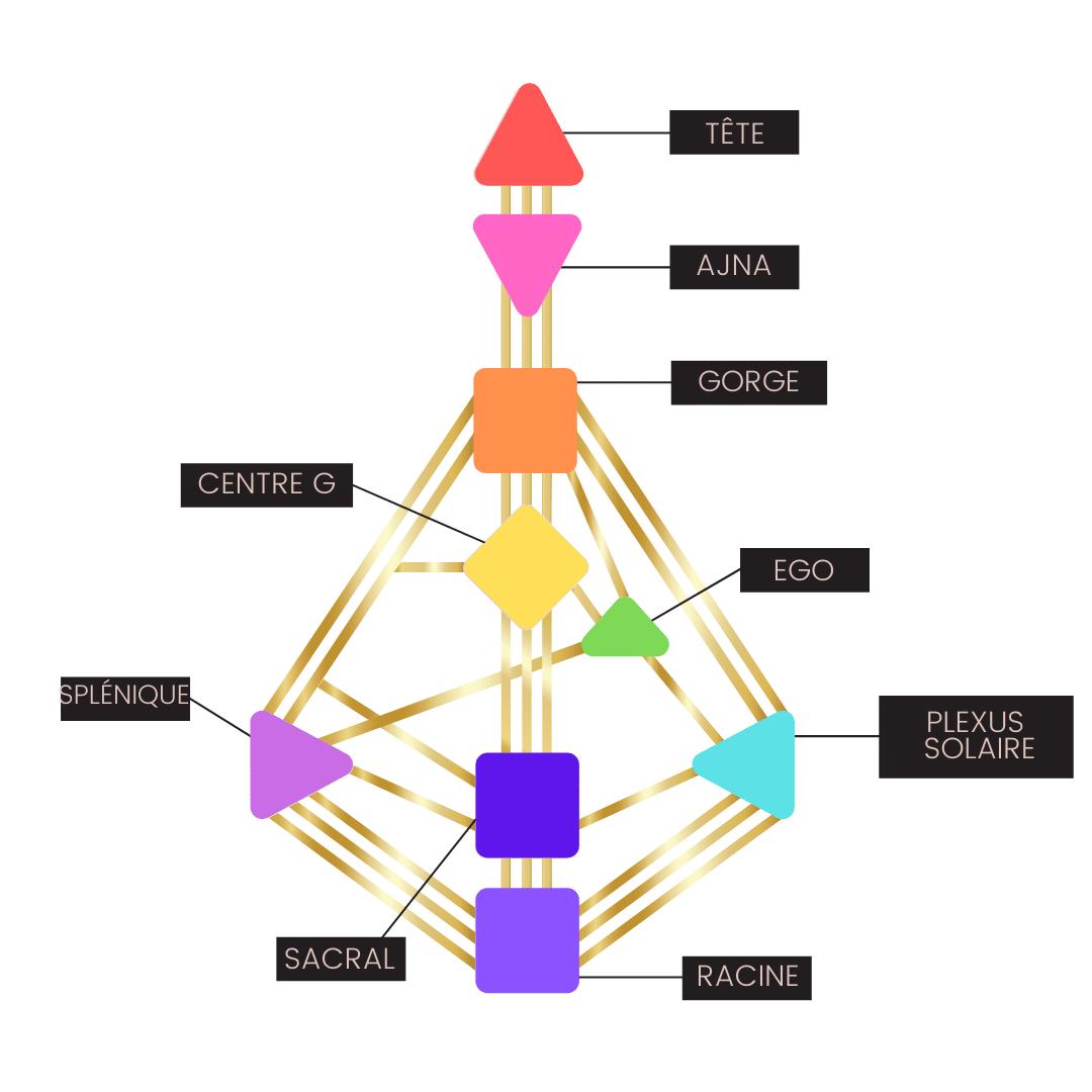 Illustration des éléments qui composent le design humain